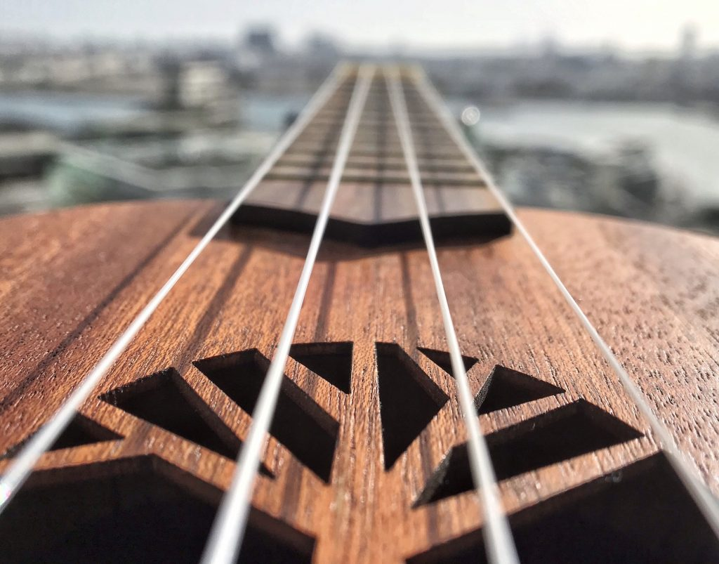 closeup strings of ukulele