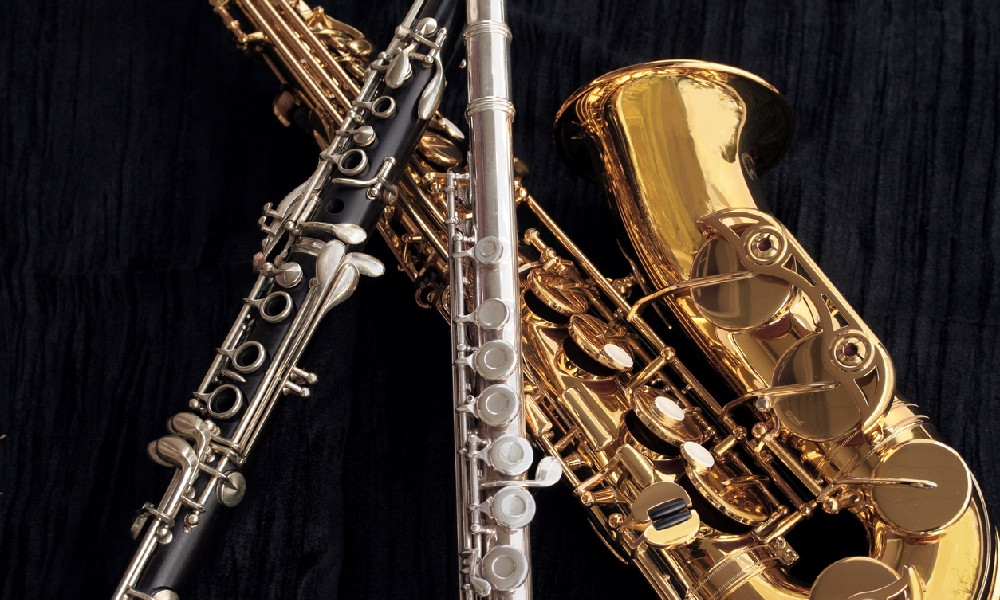 The Top 3 Woodwind Instruments for Beginners